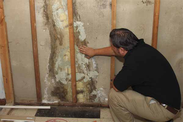 Boston area home inspections are important in the real estate buying process.